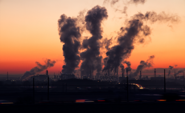 Environmental risks and pregnancy