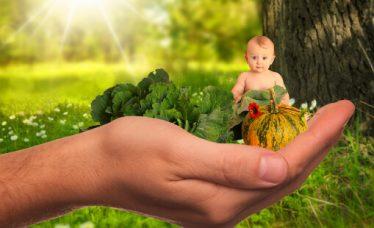 Savjetovanje Zdravo i fino u Zaboku – Holistički pristup zdravlju djece