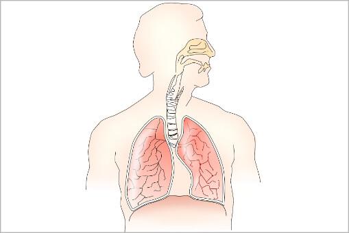 zdravlje nosa