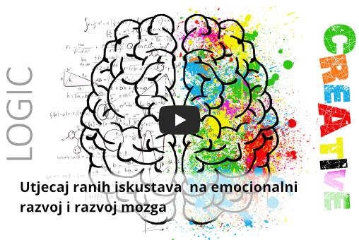 rani razvoj mozga