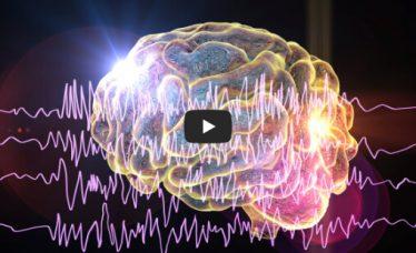 Epilepsija – što se događa kod prvog konvulzivnog napadaja u djeteta i što učiniti u tom slučaju?